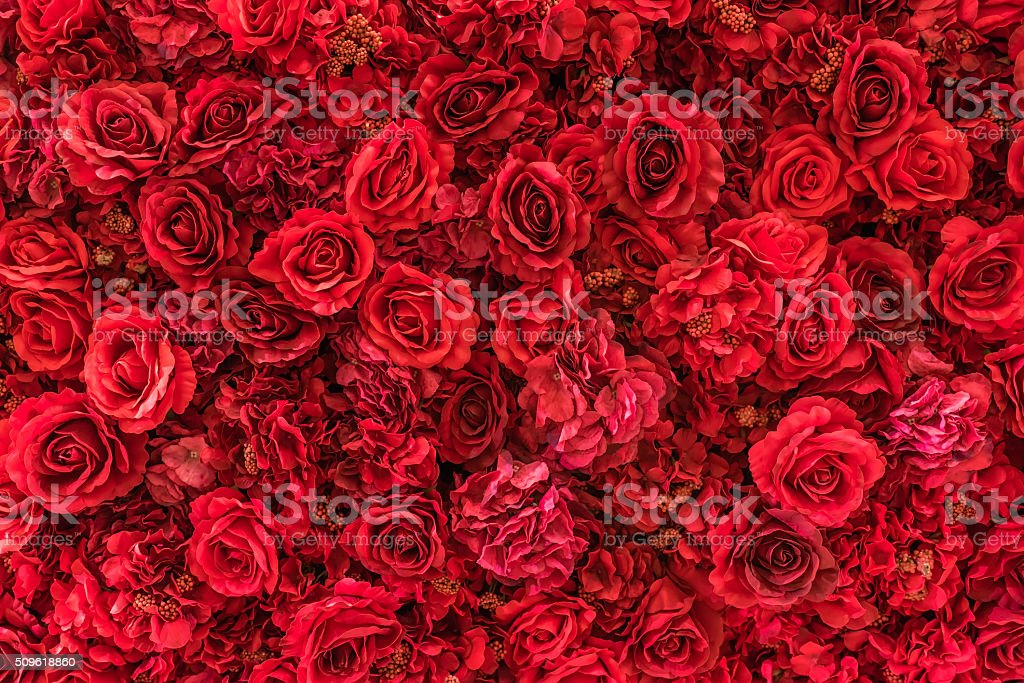 Backdrop of vivid red paper roses background stock photo