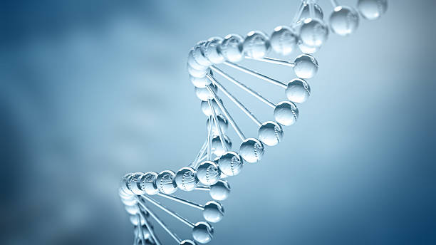 DNA Background - 3D illustration DNA helix business card - 3D illustration helix model stock pictures, royalty-free photos & images