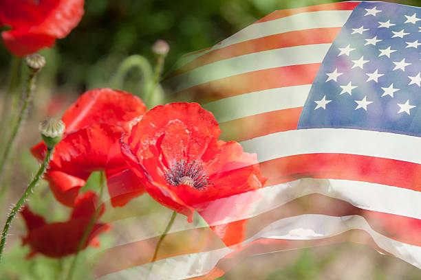 Background:  American flag with poppy flower background. USA. Patriotism. stock photo
