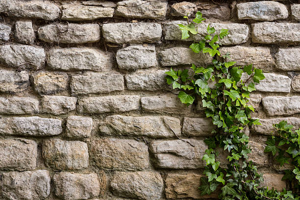 Ancient Stone Wall : Royalty free stone wall pictures images and stock photos