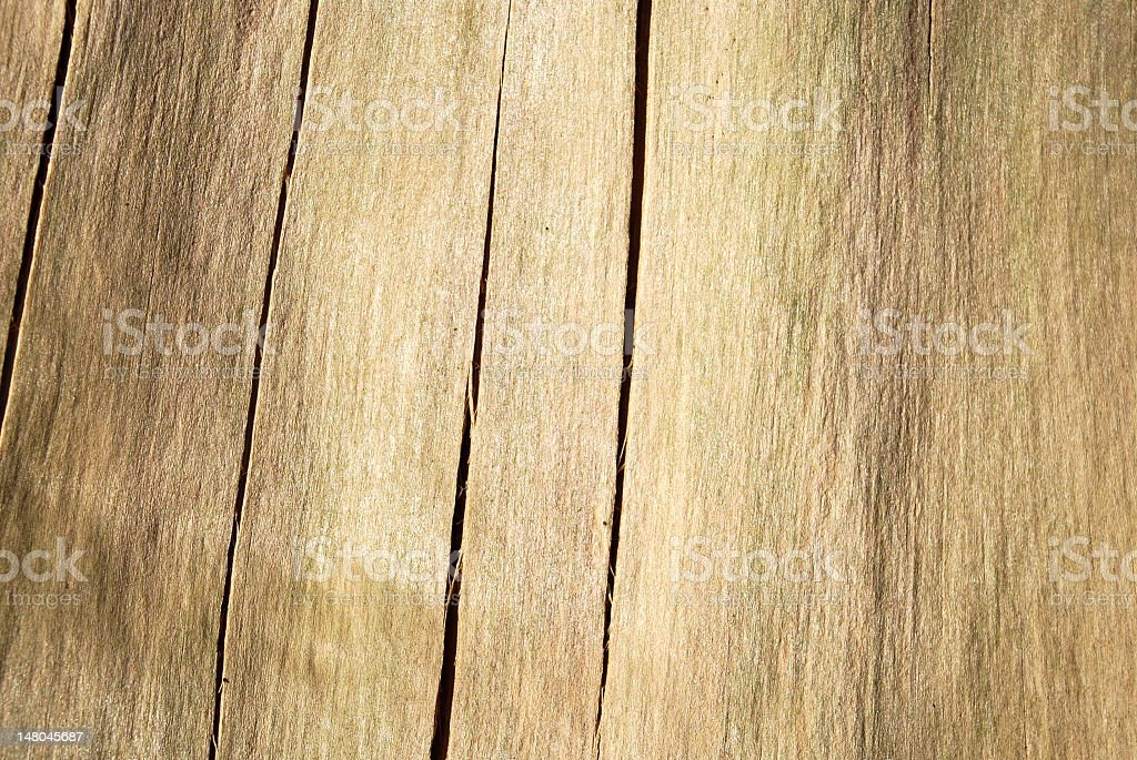 Background beige weathered tree / wood royalty-free stock photo