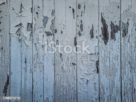 This is a photo of a old wooden barn wall that can work well as a background texture with peeling blue paint