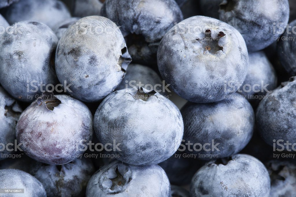 Background blueberries royalty-free stock photo