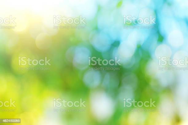 Photo of Background blur of nature in spring.