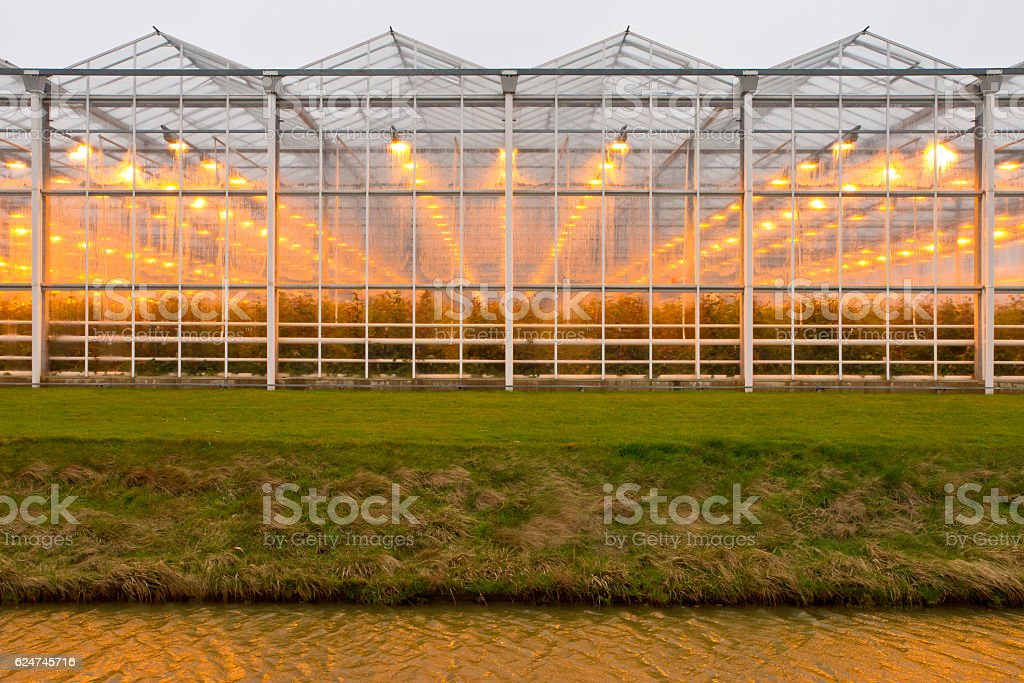background commercial greenhouse stock photo