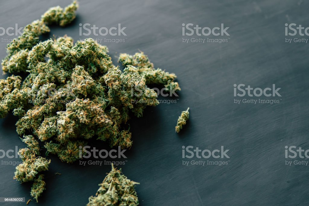Background copy space of cannabis flowers with trichomes on with a dark background royalty-free stock photo