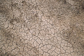 Background Dry Cracked Soil Dirt Or Earth During Drought. Dry Cracked Earth Depicting Severe Drought Conditions
