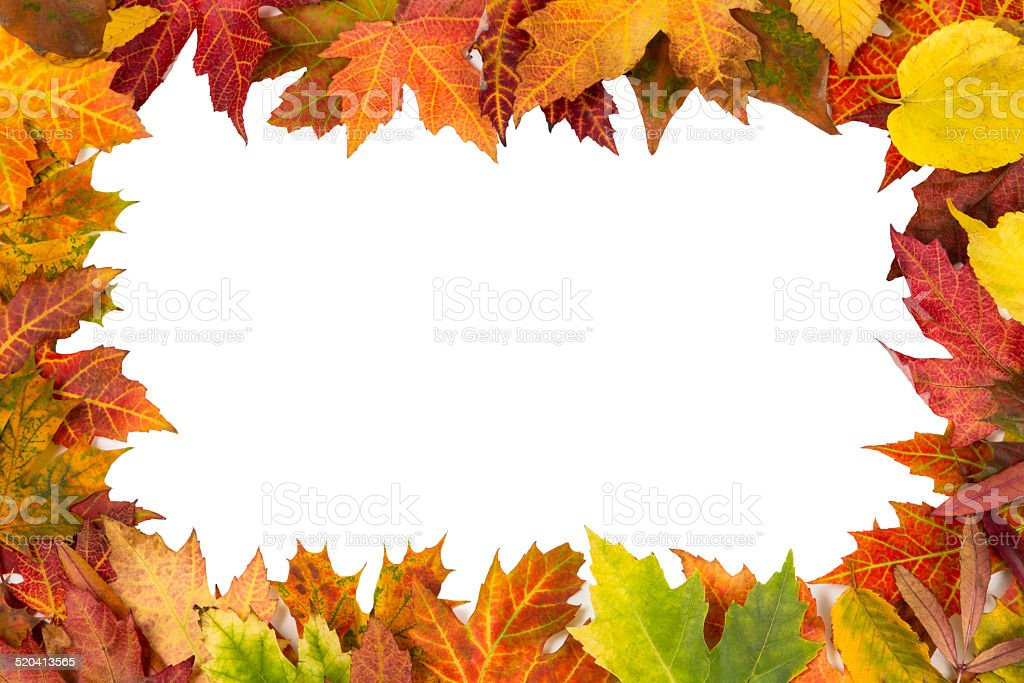 Background frame colorful autumn leaves wedding party invite stock photo