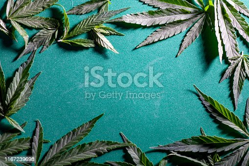 936410150istockphoto Background from cannabis drug leaves. 1167239698