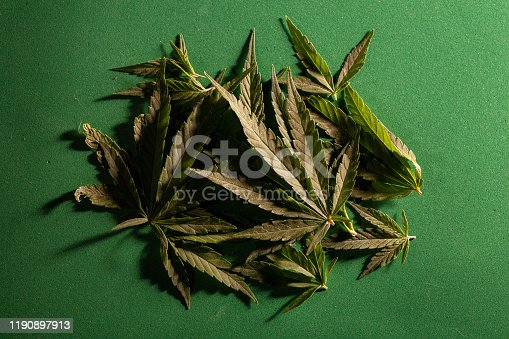 936410150istockphoto Background from cannabis drug leaves. 1190897913