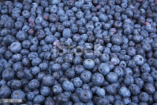 533340696istockphoto Background from freshly picked blueberries 1001621758