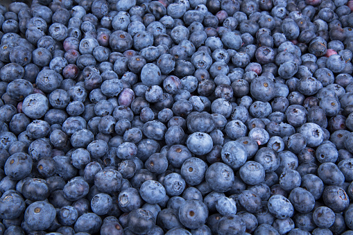 533340696 istock photo Background from freshly picked blueberries 1001621758