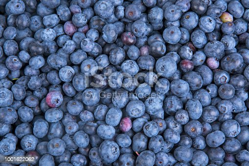 533340696istockphoto Background from freshly picked blueberries 1001622062