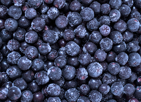 533340696 istock photo Background from freshly picked blueberries - 1132710312