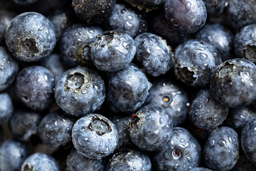 533340696 istock photo Background from freshly picked blueberries 1163478810