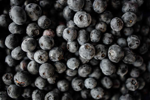 533340696 istock photo Background from freshly picked blueberries 1258106862