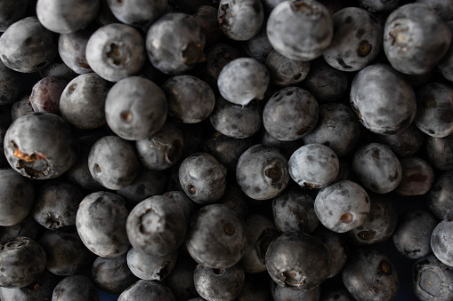 533340696 istock photo Background from freshly picked blueberries 1258106865