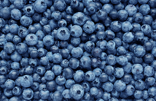 533340696 istock photo Background from freshly picked blueberries 533340696