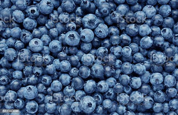 Background from freshly picked blueberries picture id533340696?b=1&k=6&m=533340696&s=612x612&h=k7v3kmj6dmckjxlabazbnwxwip5smy54ehoobtdjome=