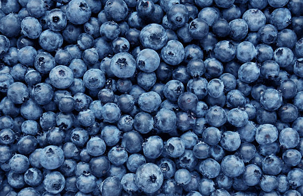 background from freshly picked blueberries - blueberry stock pictures, royalty-free photos & images