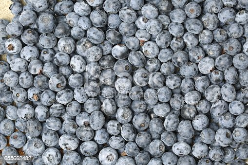 533340696istockphoto Background from freshly picked blueberries 655662482