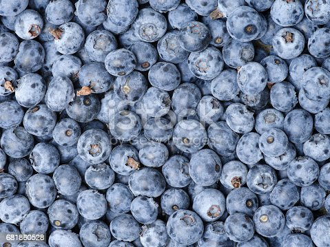 533340696istockphoto Background from freshly picked blueberries 681860528
