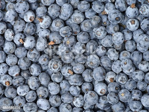 533340696istockphoto Background from freshly picked blueberries 685886114