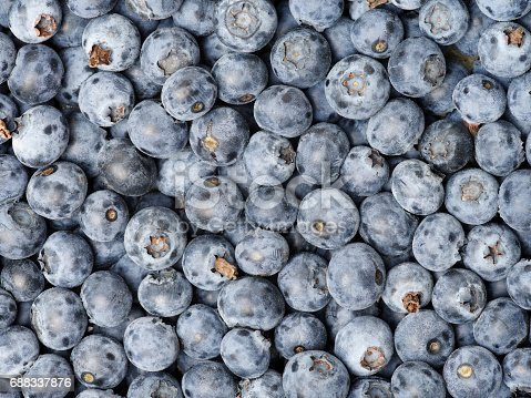 533340696istockphoto Background from freshly picked blueberries 688337876