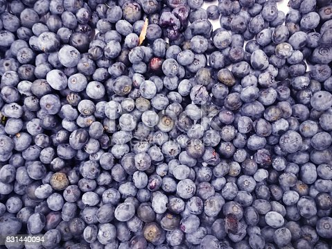 533340696istockphoto Background from freshly picked blueberries 831440094