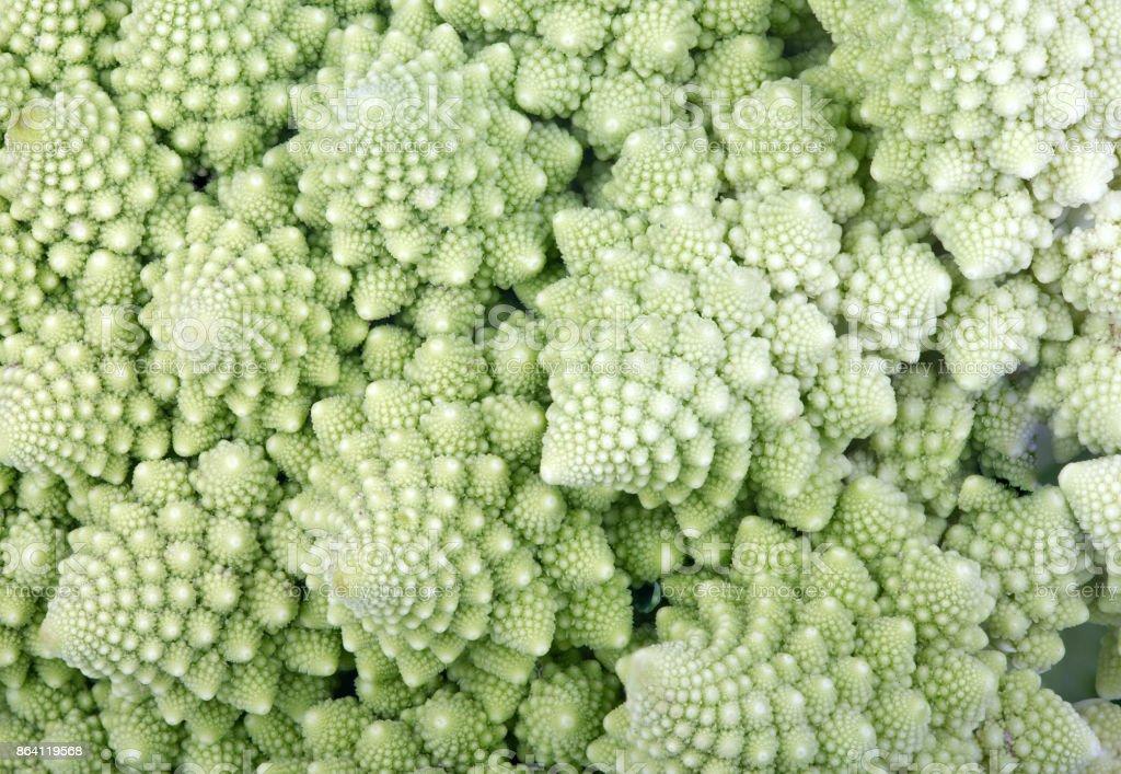background from green Roman cauliflower royalty-free stock photo
