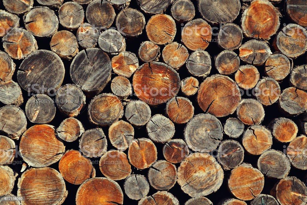 Background from old wooden disks - Lizenzfrei Baum Stock-Foto