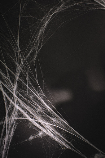 Dramatically lit halloween background of cobweb on a black surface. Copy space.