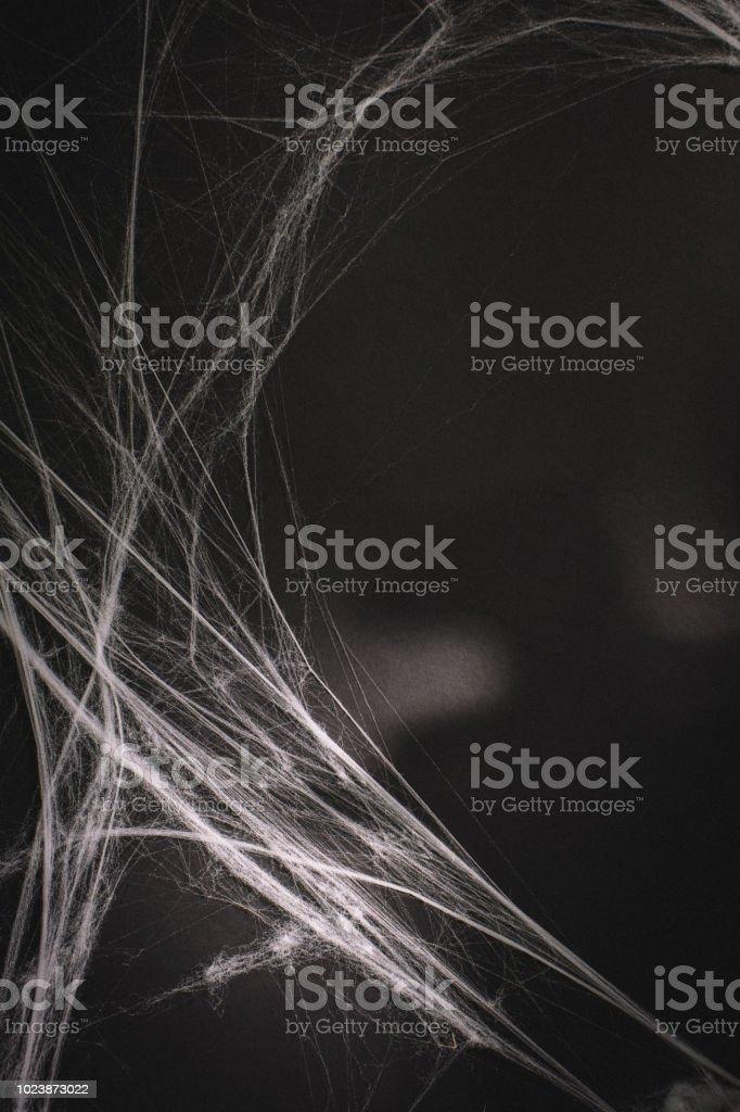 background full of cobwebs stock photo