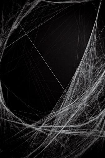 istock background full of cobwebs 183019592