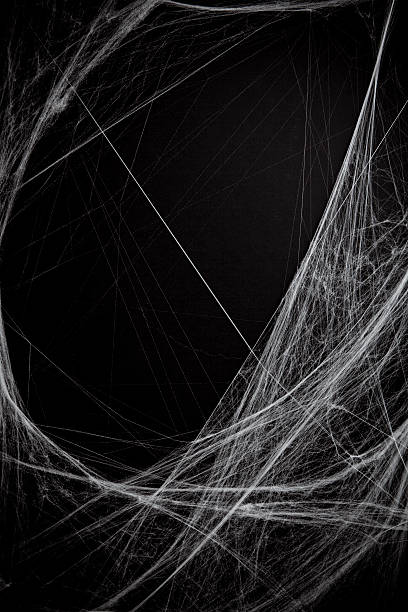 background full of cobwebs - spider web stock photos and pictures