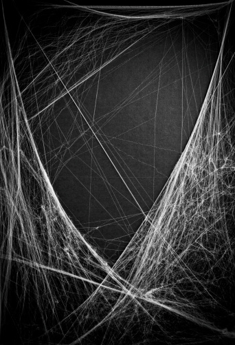 Horror Abstract Spider web trap and die concept