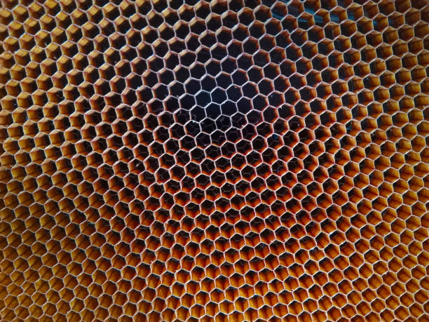 background honeycomb structure of carbon fiber - foto stock