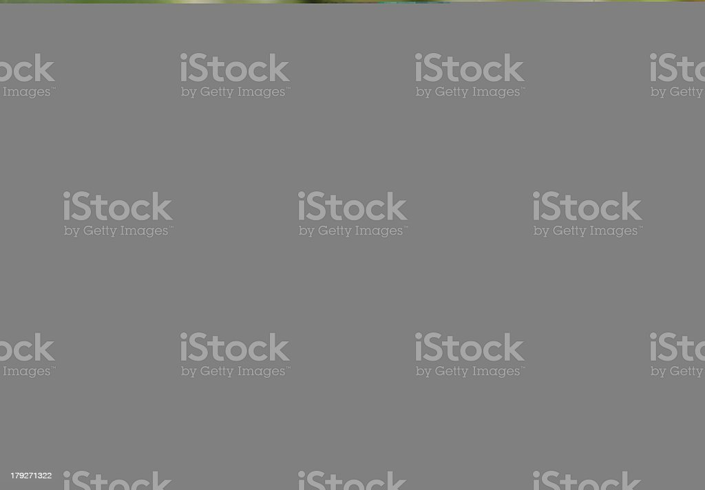 Background image of classic columns royalty-free stock photo