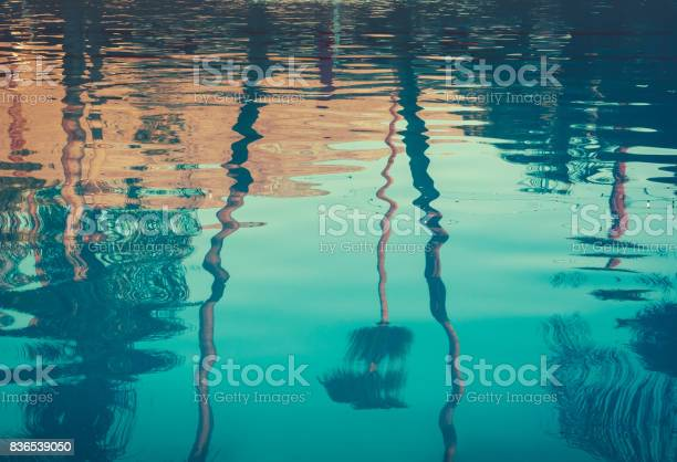 Photo of Background image of palm trees reflected in swimming pool