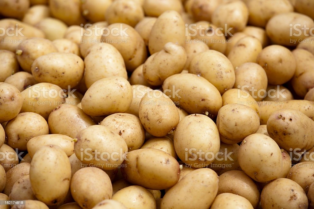 Background image with fresh potatoes royalty-free stock photo