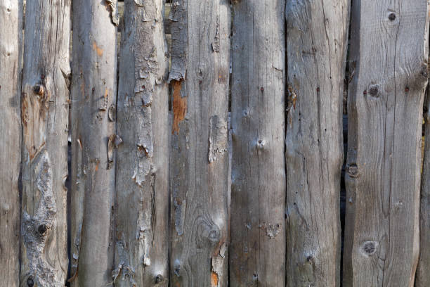 Cтоковое фото Background in style a rustic from old unpainted vertical boards with knots