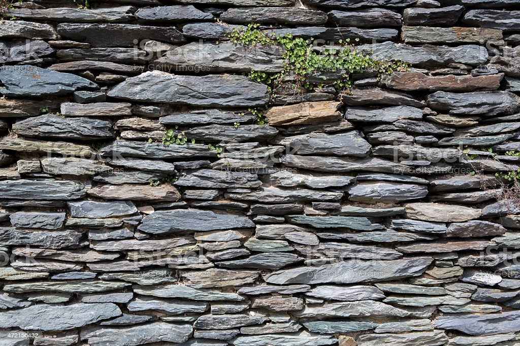 Background of an old exterior stone wall wallpaper with plants stock photo