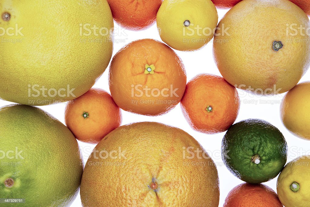 Background of assorted citrus fruit on white stock photo