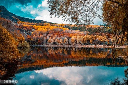 Sonbahar mevsimi renklerine bürünen ormanın gölde yansıma fotoğrafı. arka plan fotoğrafı. full frame makine ile çekilmiştir.