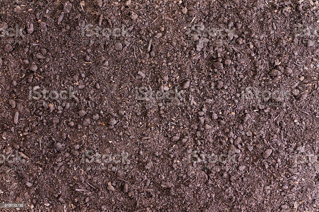 Background of bare soil with copy space stock photo
