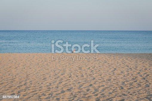 istock background of beach 637952384