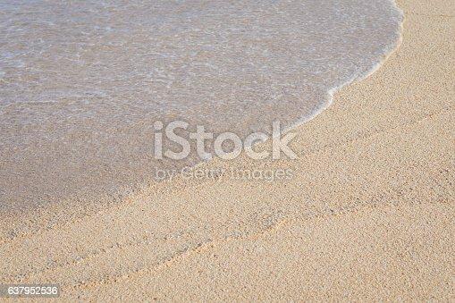 istock background of beach 637952536