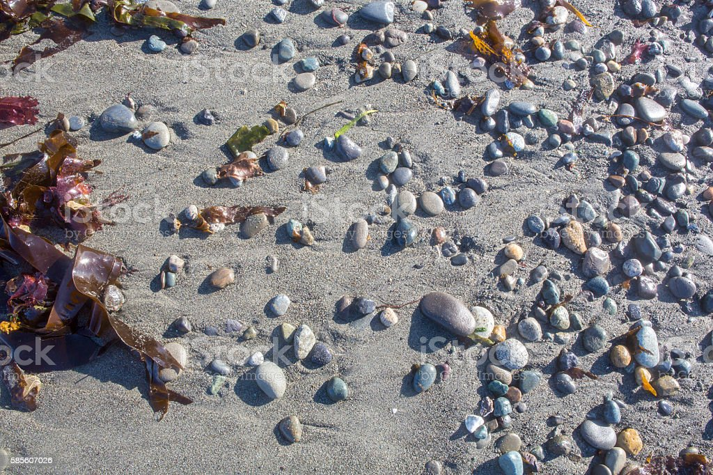 Background of beach sand with round stones and seaweed stock photo