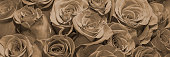 Background of bouquets of flowers. Roses. Close up. Panorama.