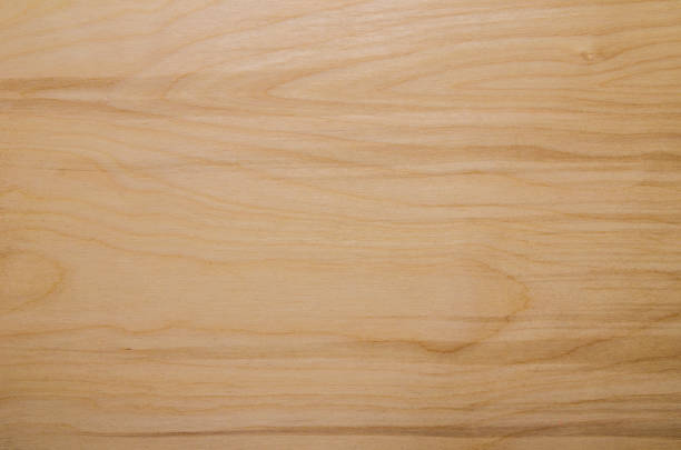 Background of birch boards - Photo